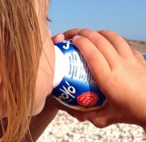 Yogurt Sano Yo'