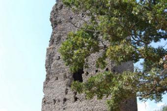 La Torre d'avvistamento, il simbolo dell'azienda di Vittorio e Cesare Colognesi.
