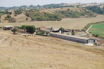 Veduta panoramica dell'Azienda.