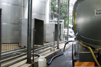L'autocisterna consegna il latte nello stabilimento Latte Sano