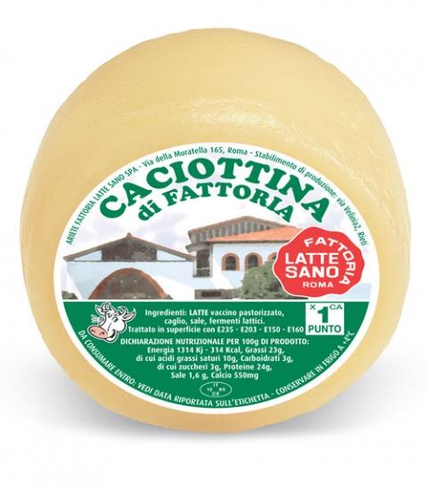 Caciottina